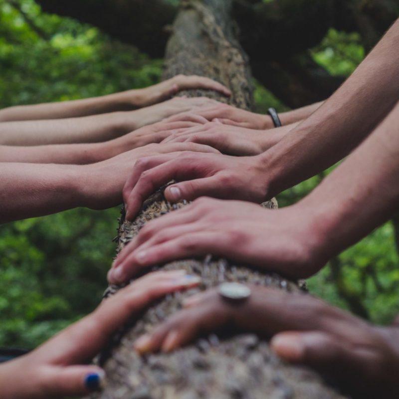 Haende verschiedener Menschen gemeinsam Teilhabe